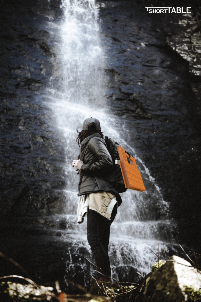 Camping or hiking…please carry me along